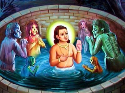 Ghanshyam Falls in the Well